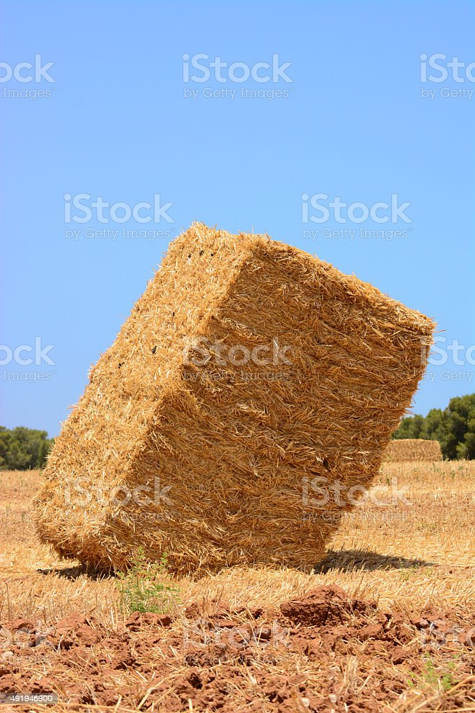 Hey bale stock photo