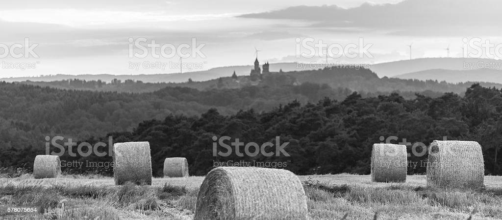 hey bale wheat field black anad white stock photo
