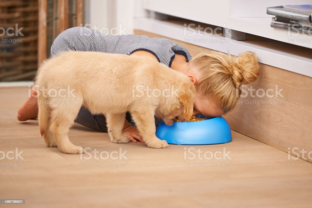 Hey! Go eat you own food! stock photo