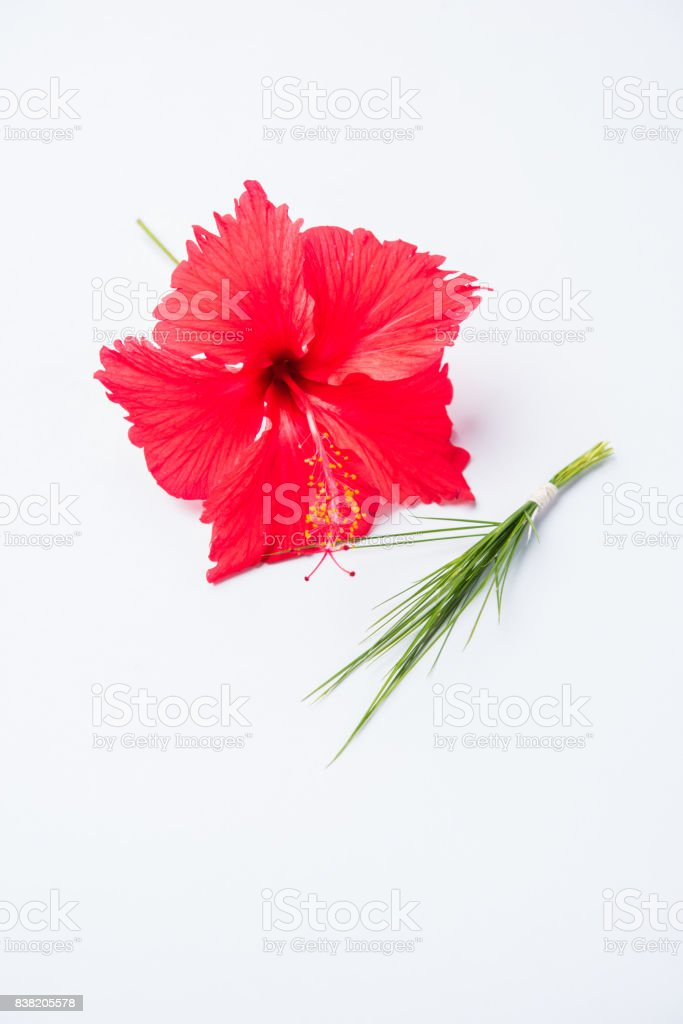 hibiscus flower or jasvand phool and durva or durva or green grass representing trishul armour, offered to lord Ganesha stock photo