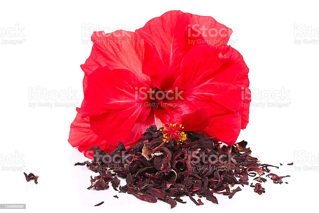 Hibiscus tea and flower royalty-free stock photo