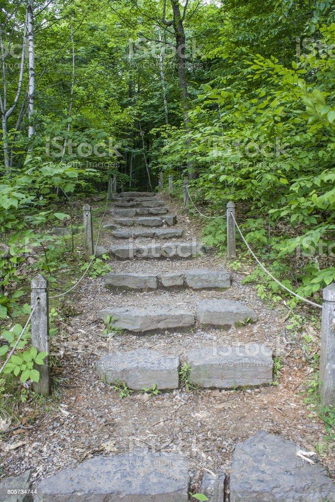 Hicking Path stock photo