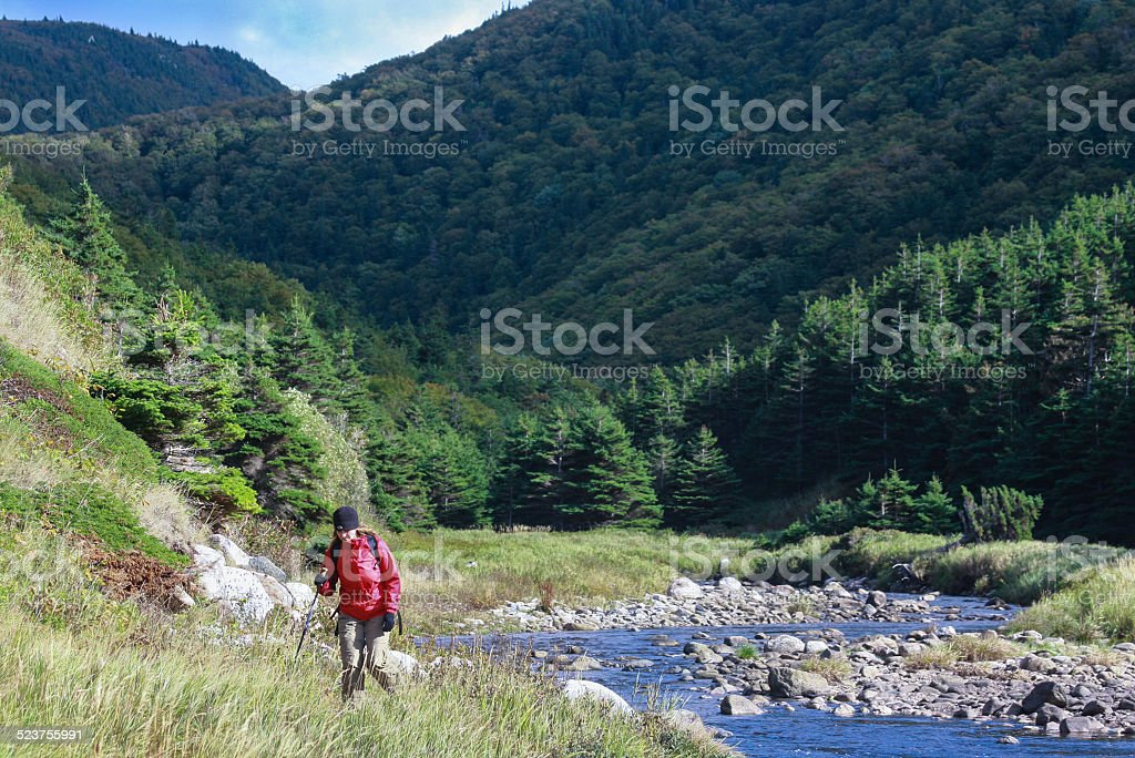 Hicking young woman stock photo