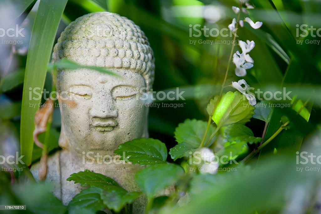 Hidden Buddha Statue in the Garden stock photo