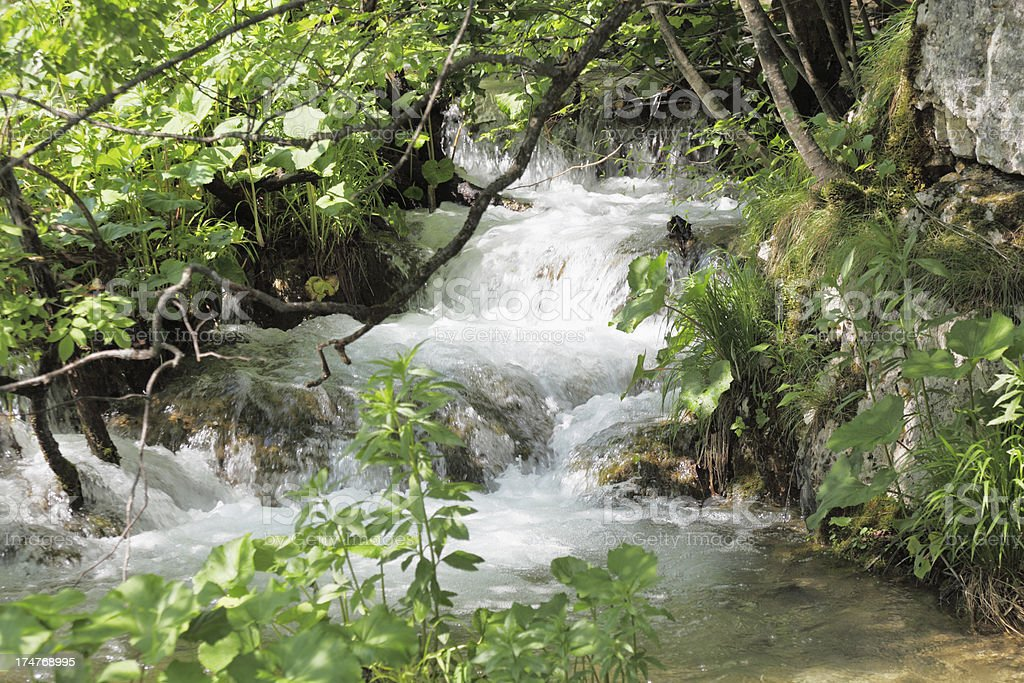 hidden cascade detail with streaming water and leaves Plitvice Croatia royalty-free stock photo