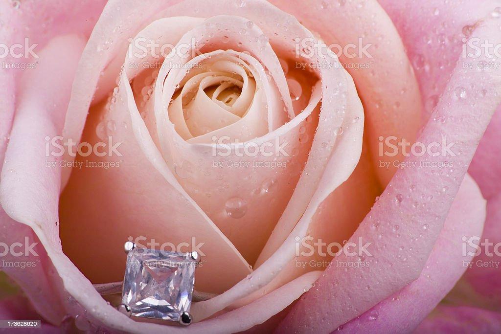 Hidden Diamond Ring royalty-free stock photo