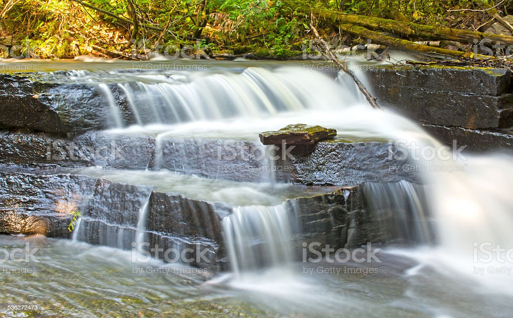 Hidden Falls in a Quiet Forest stock photo