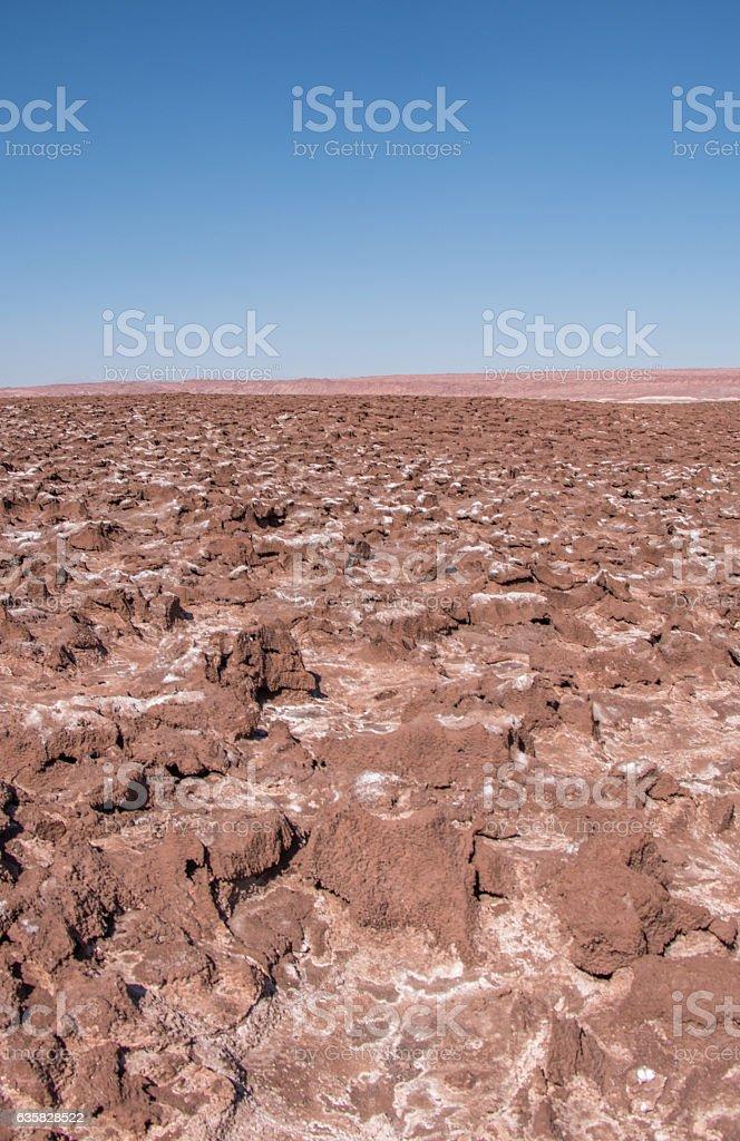 Hidden lagoons of Baltinache, Atacama Desert, Chile stock photo