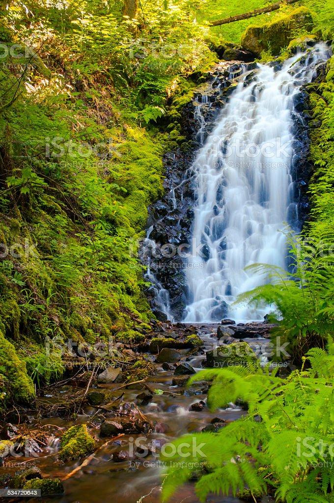 Hidden Tanner Butte Falls Columbia River Gorge stock photo