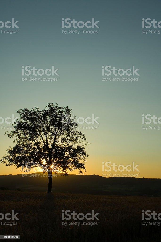 Hiding Sun stock photo