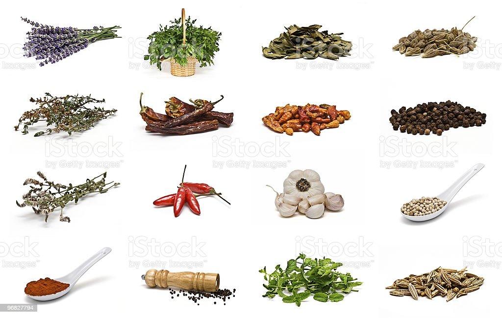 Hierbas y especias. royalty-free stock photo