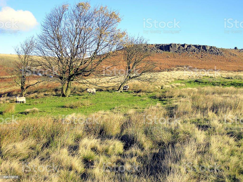 Higger Tor, Derbyshire. stock photo