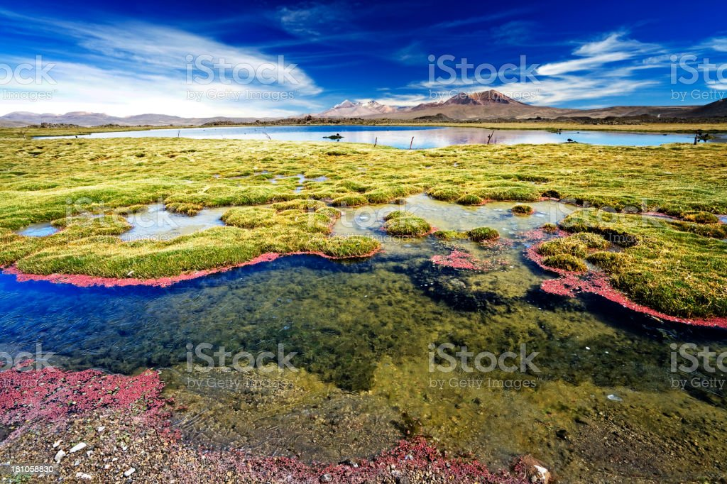 High altitude  wilderness  landscape in Northern Chile stock photo