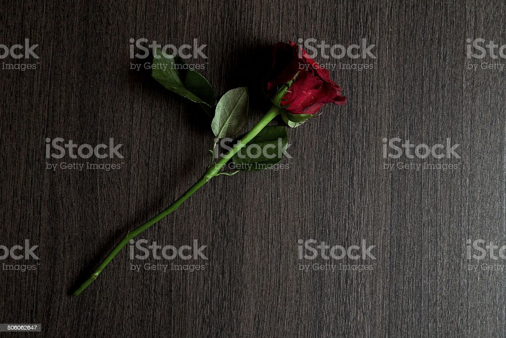High angle view of red rose on brown wooden table royalty-free stock photo
