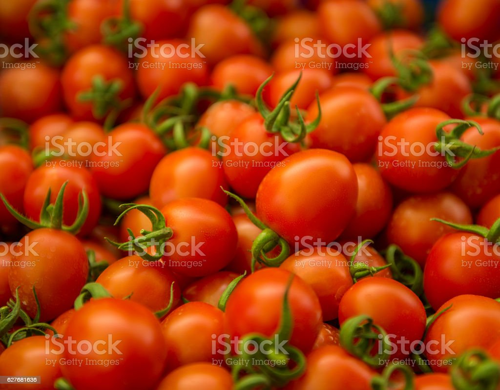 High angle view of stacked large group of tomatos stock photo