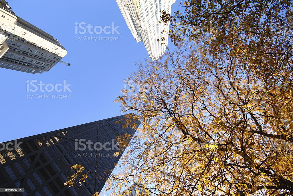 High Buildings stock photo