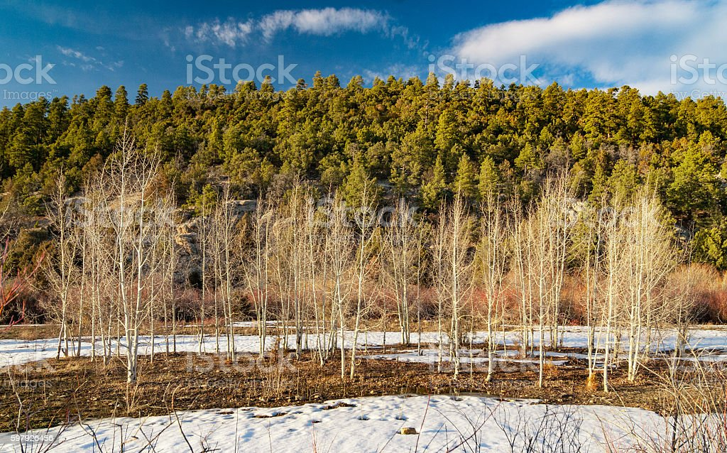 High Country in Winter stock photo