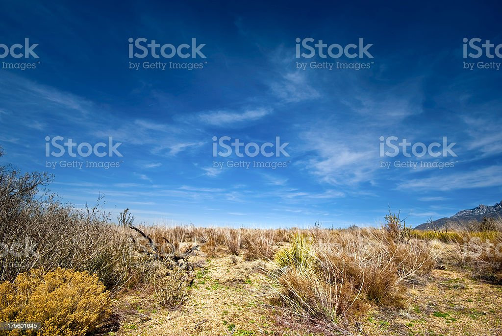 High desert landscape royalty-free stock photo