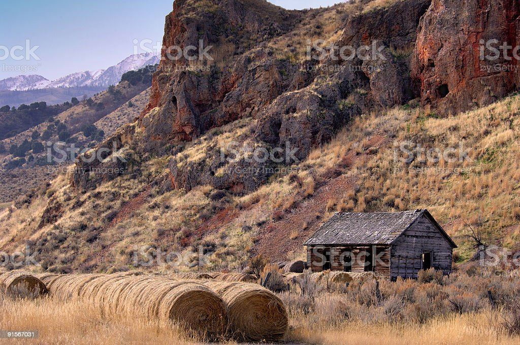 High Desert Life royalty-free stock photo