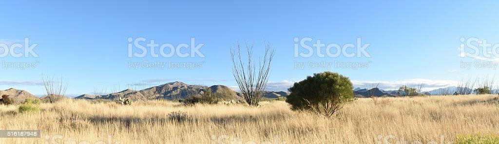 High Desert Panorama stock photo