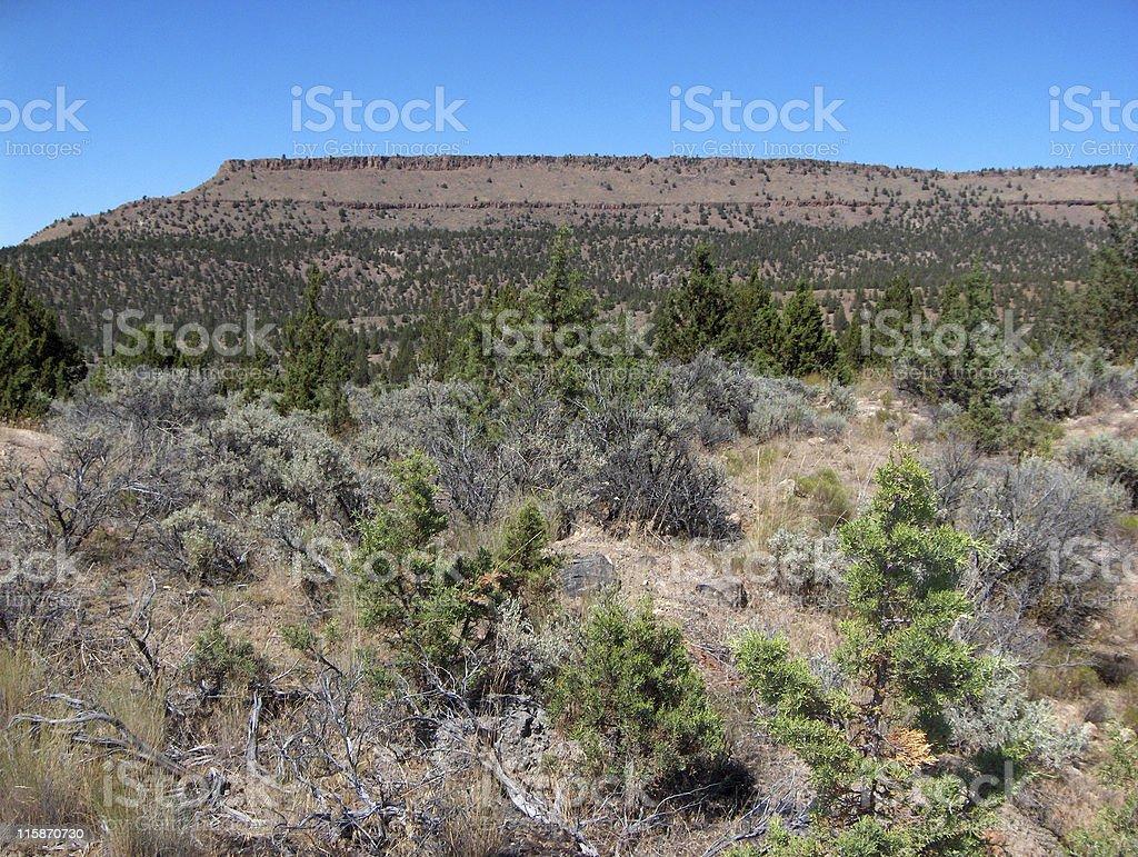 High Desert stock photo