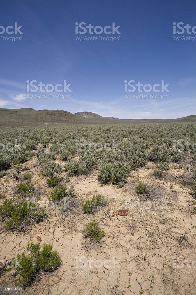 High Desert royalty-free stock photo
