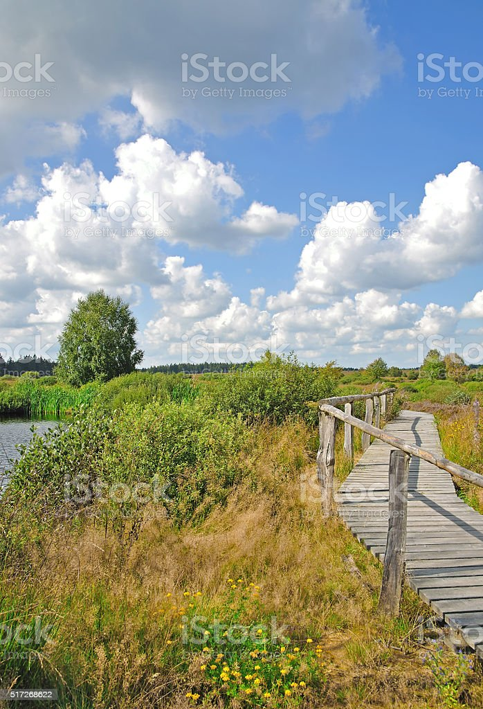 Hohes Venn,Eifel National Park,Germany stock photo