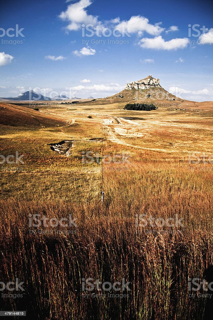 High grass African landscape royalty-free stock photo