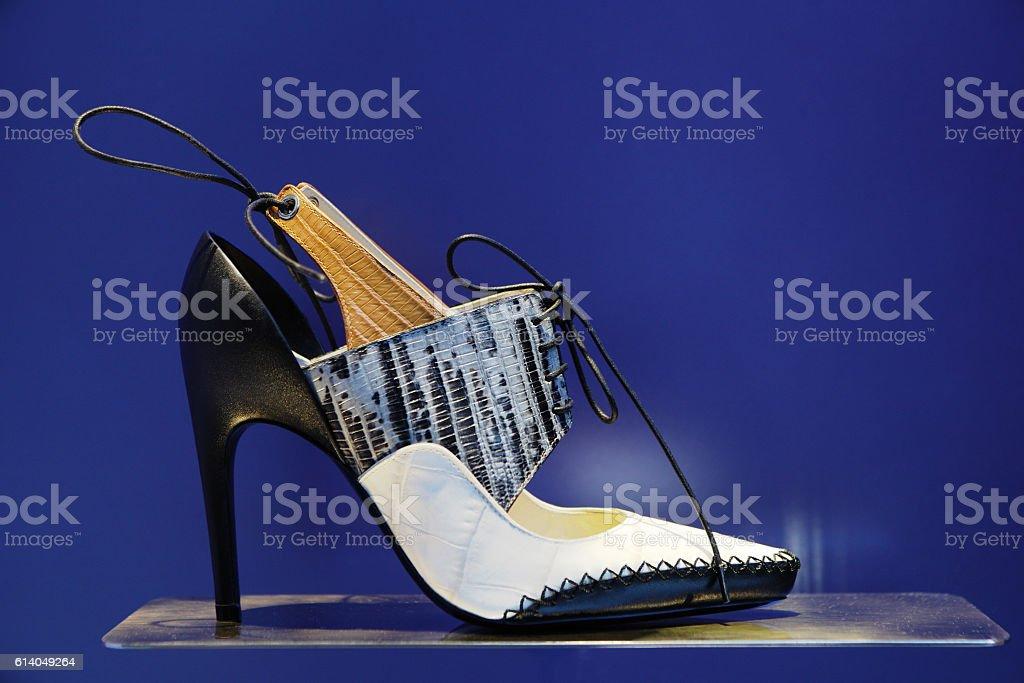 High Heel Shoe Leather Pump Fashion stock photo