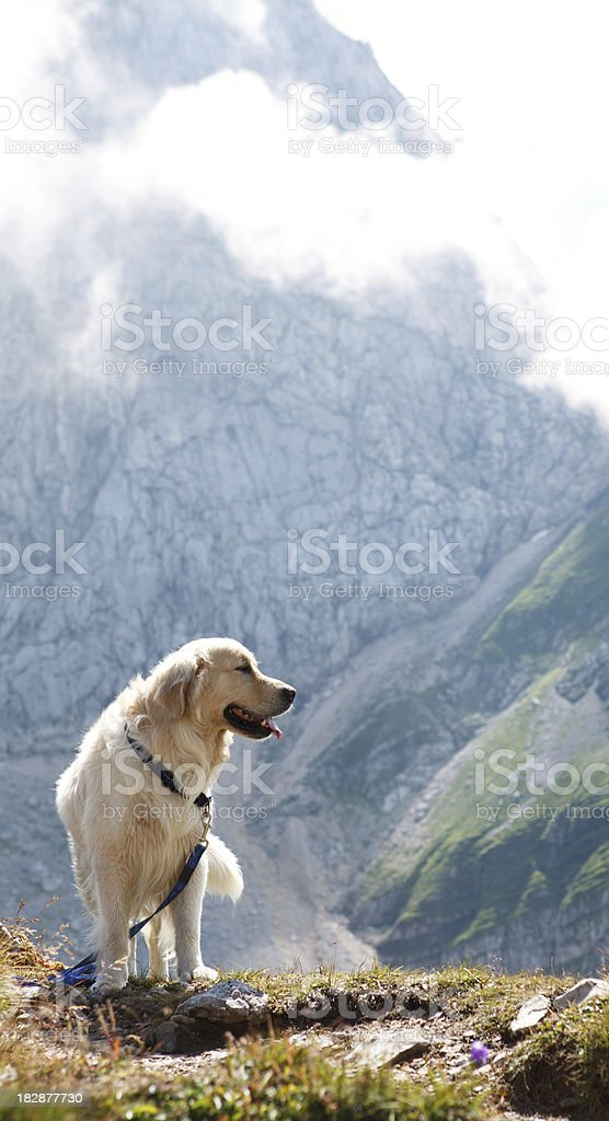 High In The Mountains royalty-free stock photo