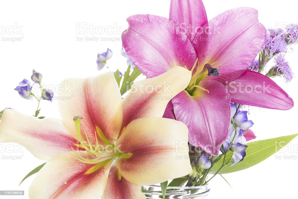 High key Oriental lily bouquet on white. royalty-free stock photo