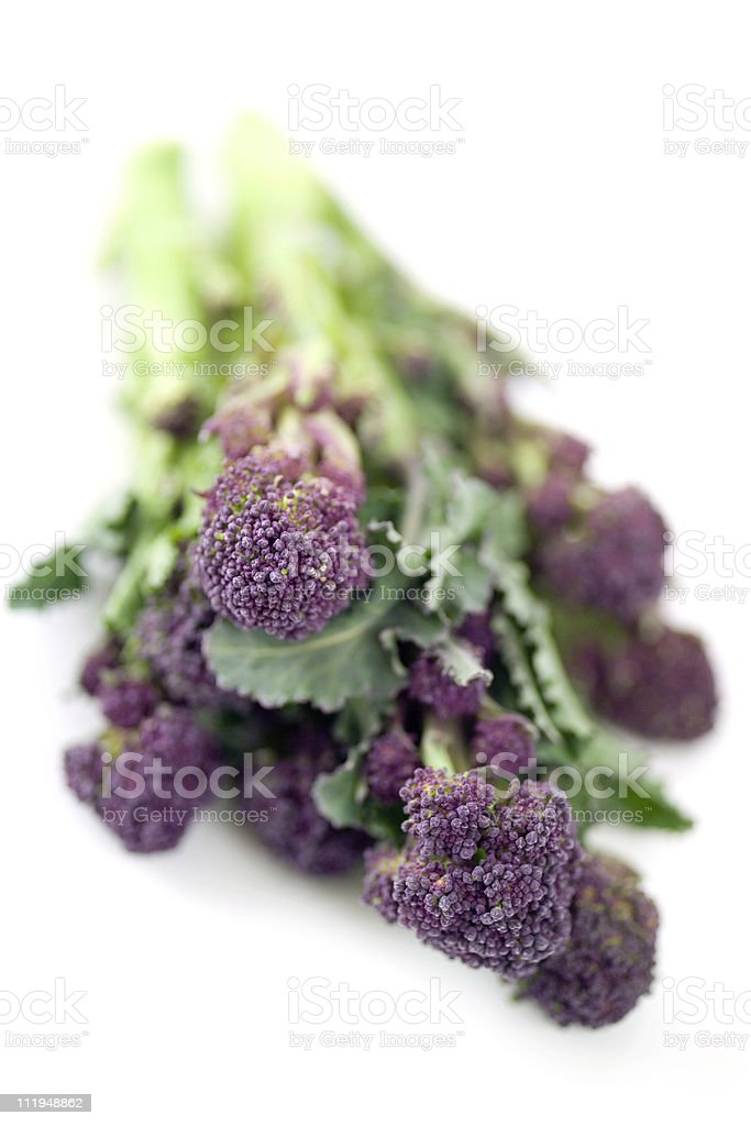 High key purple sprouting broccoli royalty-free stock photo
