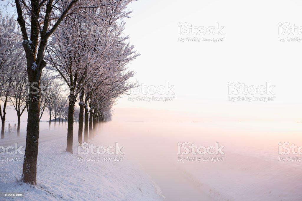 High Key Winter Sunrise stock photo