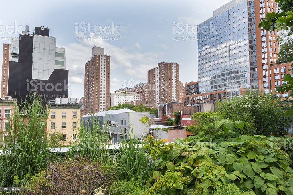 High Line Park in New York, USA stock photo