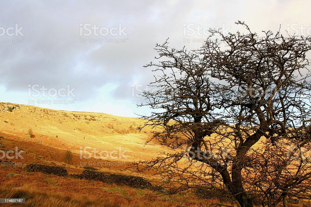 High Moorland Landscape Stanage Edge, Peak District stock photo