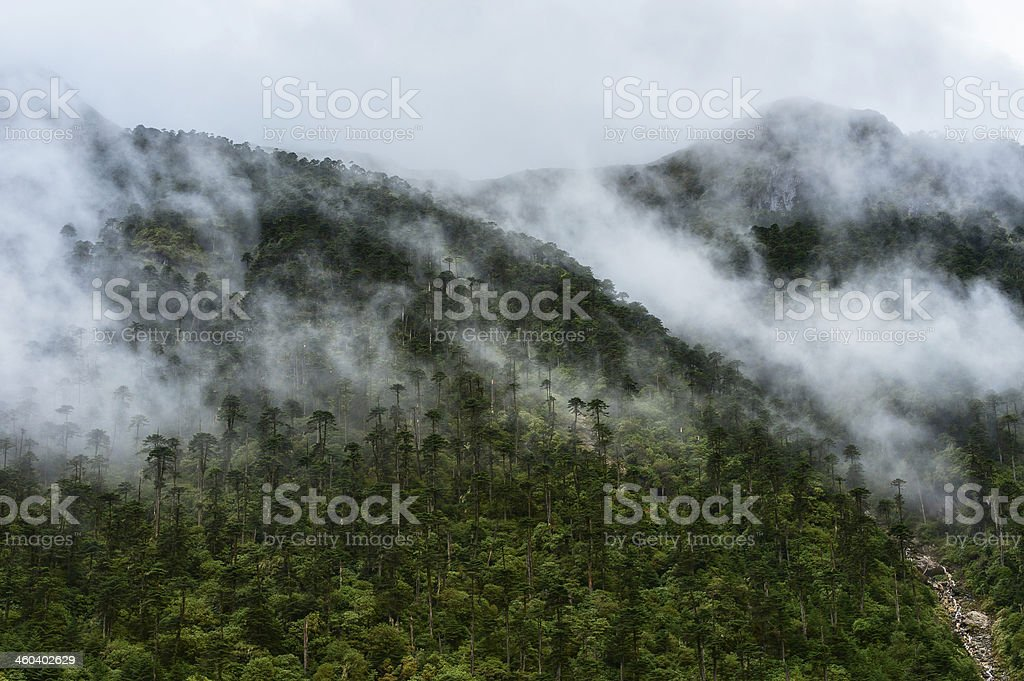 High mountains and mist, Tawang, Arunachal Pradesh, India stock photo