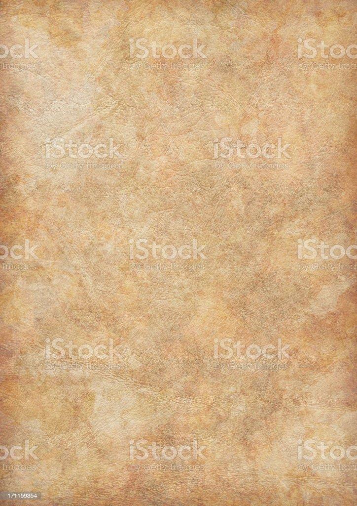 High Resolution Ancient Animal Skin Parchment Vignette Grunge Texture stock photo