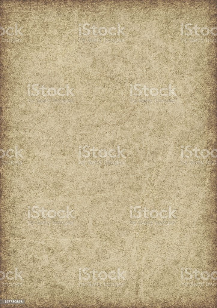 High Resolution Animal Skin Antique Parchment Vignette Grunge Texture royalty-free stock photo