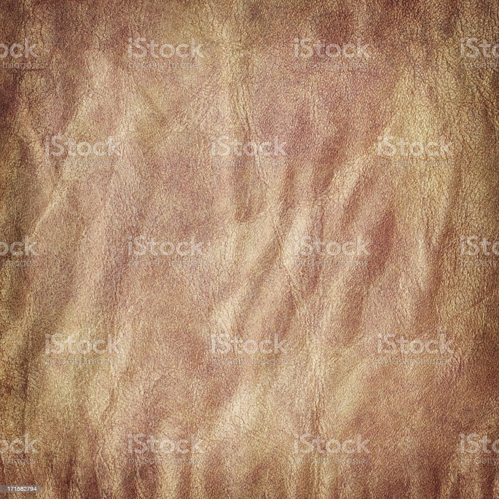 High Resolution Animal Skin Parchment Grunge Texture royalty-free stock photo