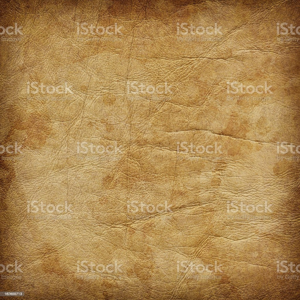 High Resolution Animal Skin Parchment Mottled Vignette Grunge Texture stock photo