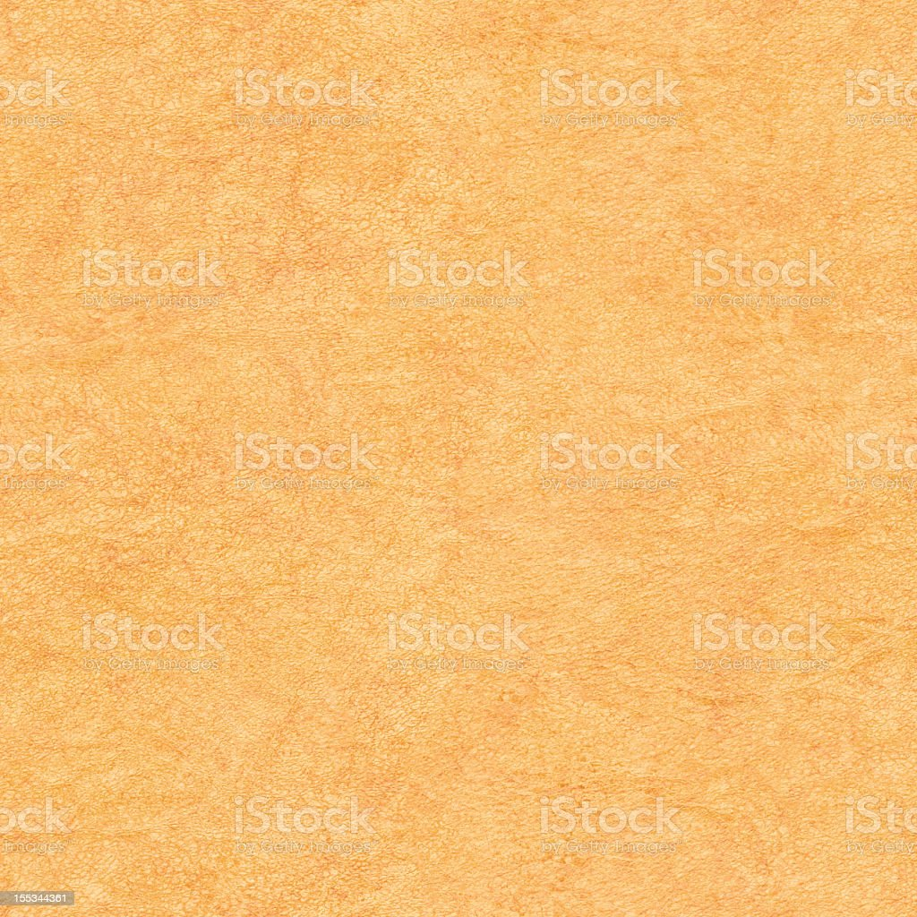 High Resolution Animal Skin Parchment Seamless Grunge Texture royalty-free stock photo