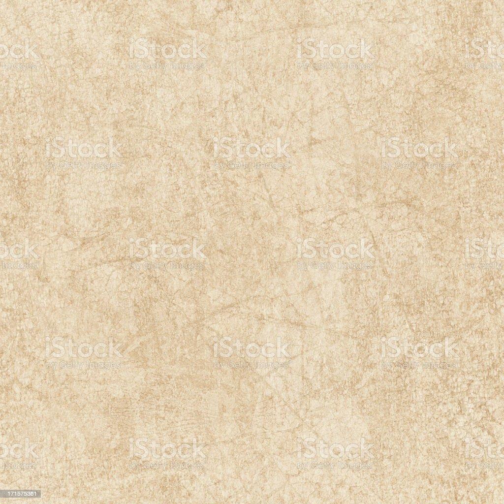 High Resolution Animal Skin Parchment (Vellum) Seamless Grunge Texture royalty-free stock photo