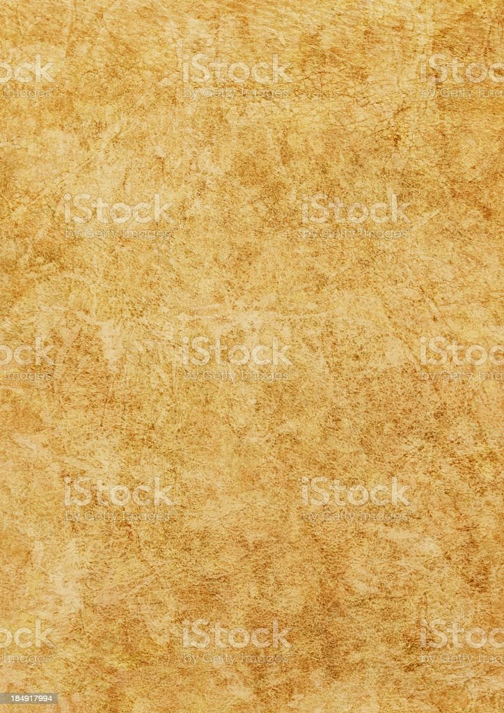 High Resolution Animal Skin Parchment Wizened Mottled Grunge Texture royalty-free stock photo