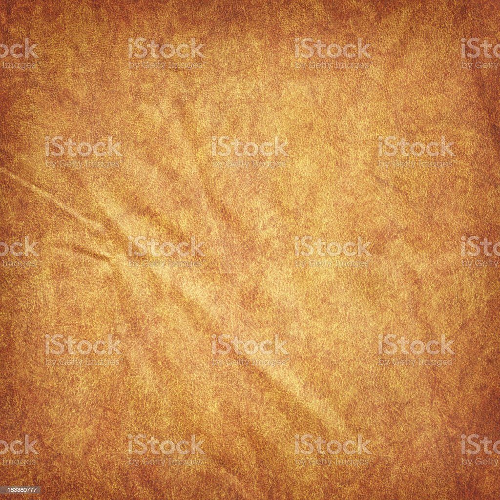 High Resolution Animal Skin Parchment (Vellum) Wrinkled Vignetted Grunge Texture stock photo