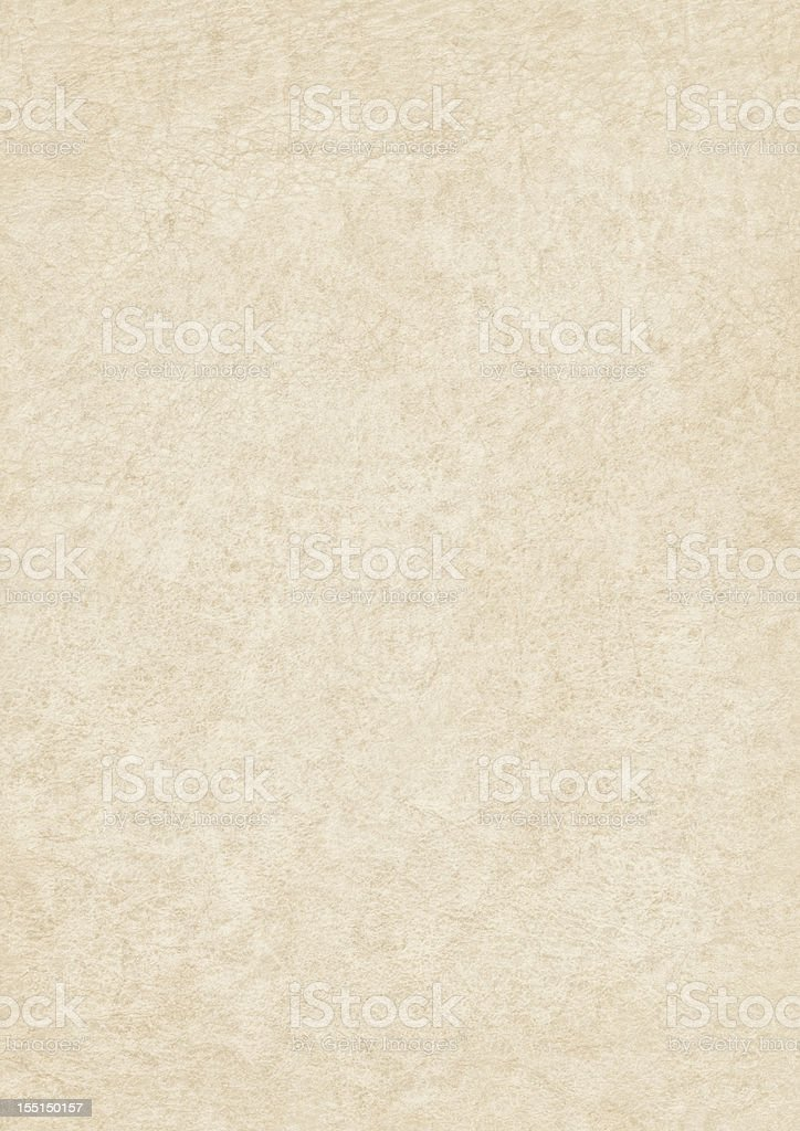 High Resolution Antique Animal Skin Parchment Grunge Texture stock photo