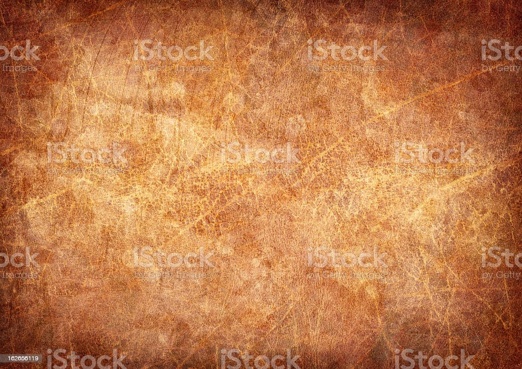 High Resolution Antique Animal Skin Parchment Mottled Vignette Grunge Texture stock photo