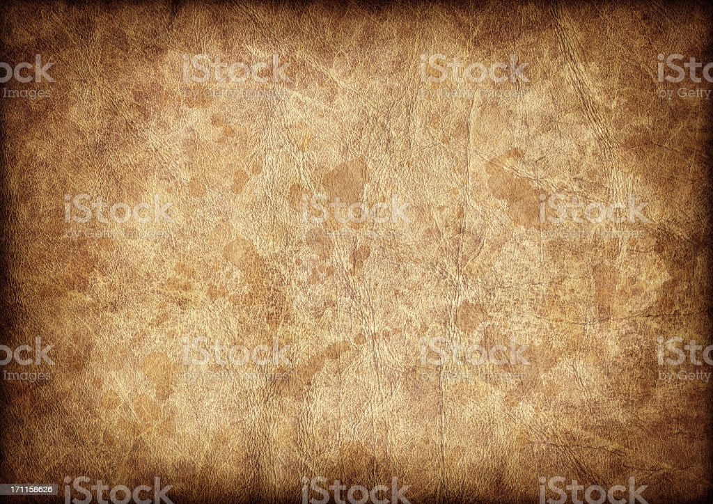 High Resolution Antique Animal Skin Parchment Vignette Grunge Texture royalty-free stock photo