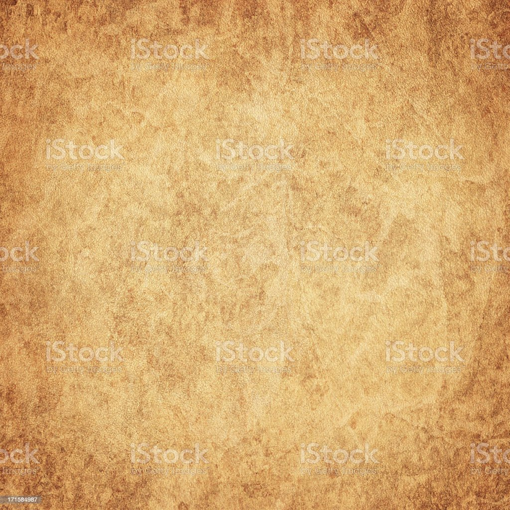 High Resolution Antique Animal Skin Parchment (Vellum) Vignetted Grunge Texture stock photo