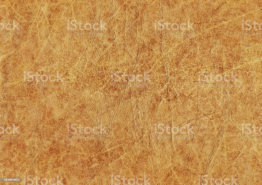 High Resolution Antique Animal Skin Parchment Wizened Mottled Grunge Texture royalty-free stock photo