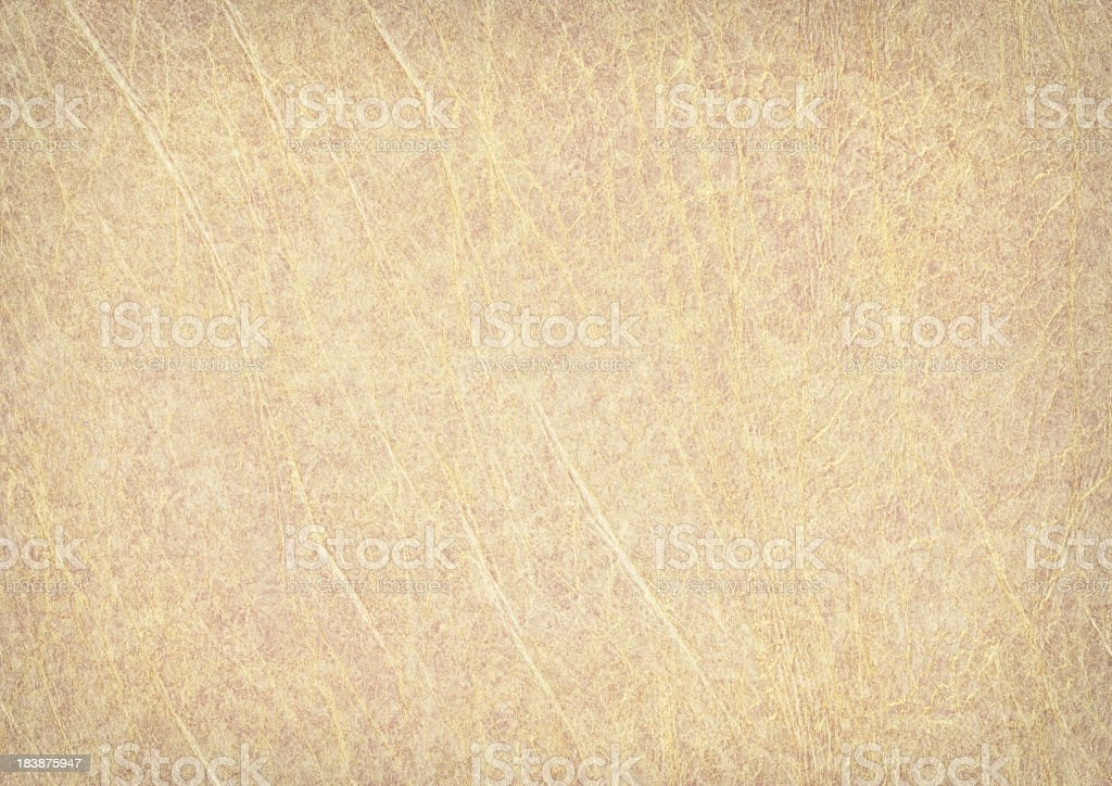 High Resolution Antique Animal Skin Parchment Wizened Vignetted Grunge Texture stock photo
